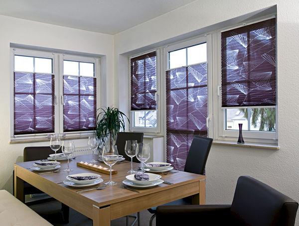 plissee bonn dekofactory. Black Bedroom Furniture Sets. Home Design Ideas