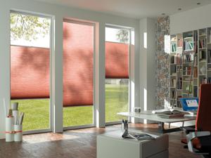 plissee essen dekofactory. Black Bedroom Furniture Sets. Home Design Ideas