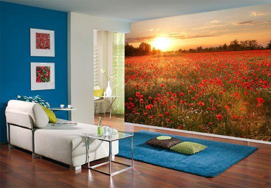 tapeten bonn dekofactory. Black Bedroom Furniture Sets. Home Design Ideas